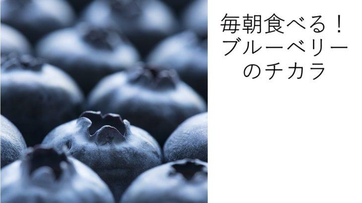 ブルーベリーの栄養成分は?毎日食べて健康生活!飽きないレシピも公開