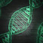 ゲノム編集食品・遺伝子組み換え食品が大量輸入される恐ろしい未来をわかりやすく解説