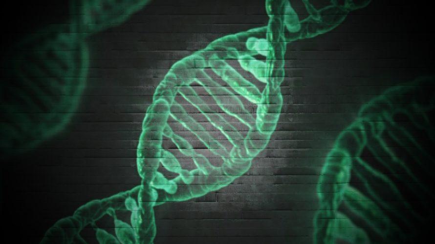 日米貿易協定(≒日米FTA)でゲノム編集食品・遺伝子組み換え食品が大量輸入される恐ろしい未来をわかりやすく解説