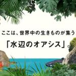 水族館が川崎駅前に2020年7月17日オープン。料金や概要まとめ